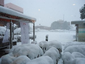 大雪でした